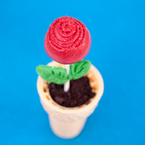 rose-pops-1