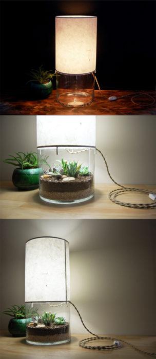 Lamp with Small Terrarium