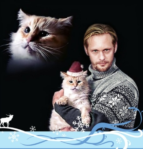 Funny Cat Photo Christmas Card