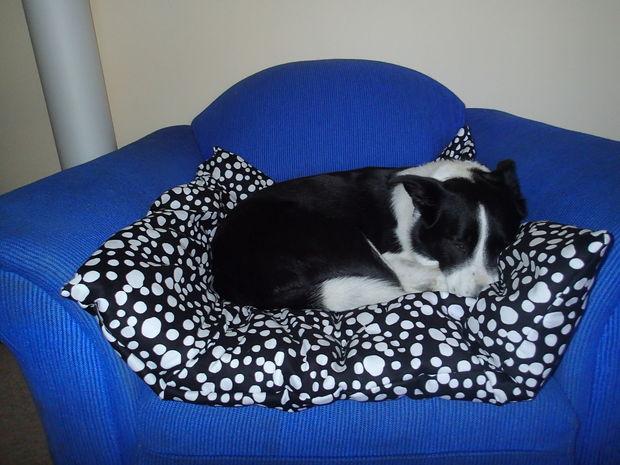 Giant Pillow Pet Bed