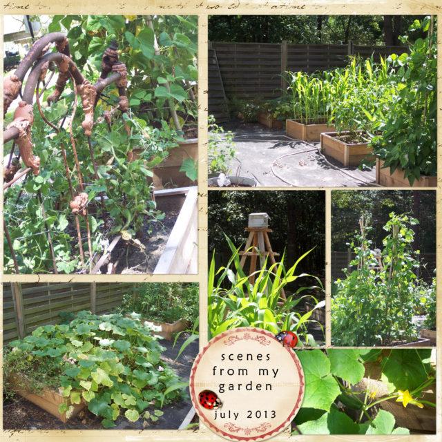 Raised Bed Garden Planters