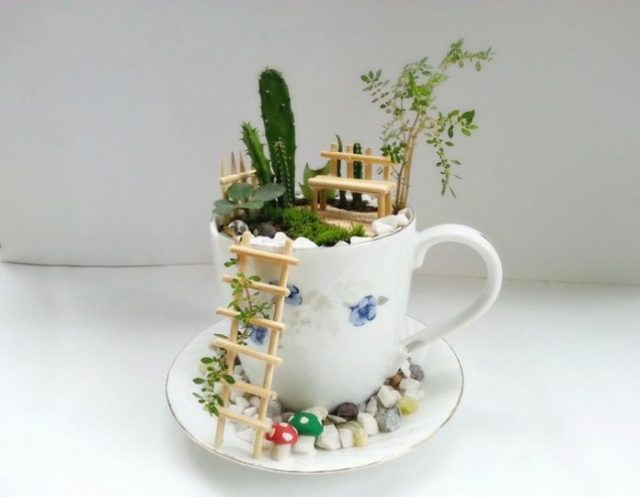 Make a Teacup Fairy Garden