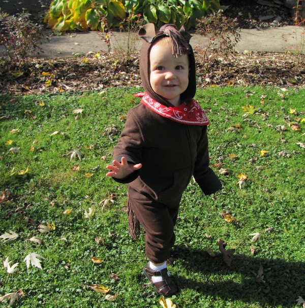 Quick Easy and Inexpensive Horse Costume
