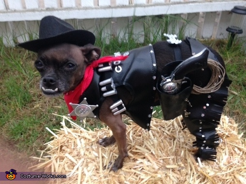 Cole the Cowboy Dog Costume