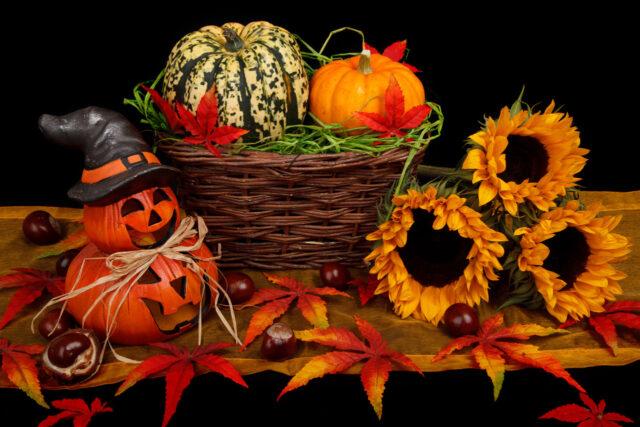 halloween-decoration-in-fall-871287575948rvtw