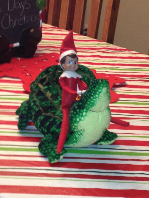 elf-on-the-shelf-alligator-wrestling