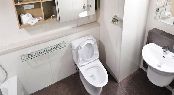Toilet Repairs in The Woodlands TX