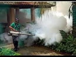 شركات-رش-المبيدات-الحشرية-بجدة