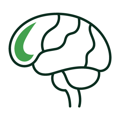 Brain Health