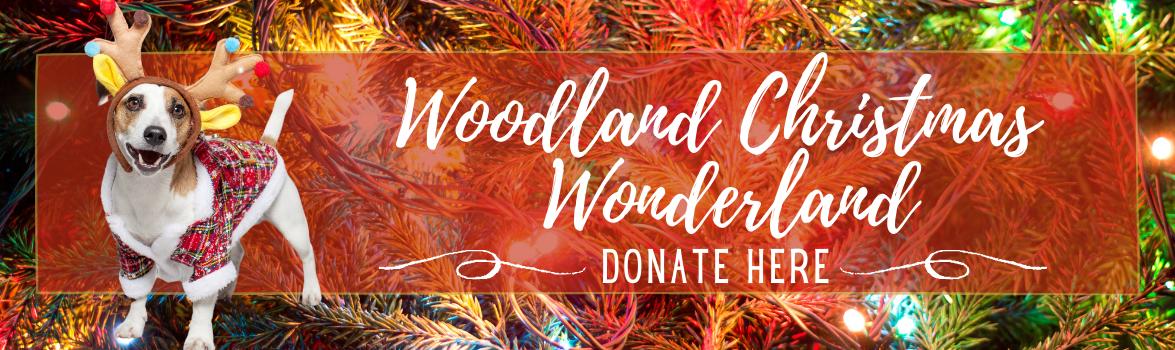 Copy of Woodland Christmas Wonderland (1)
