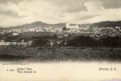 T-1900c_Aibonito_Panoramica_Postal_Costas