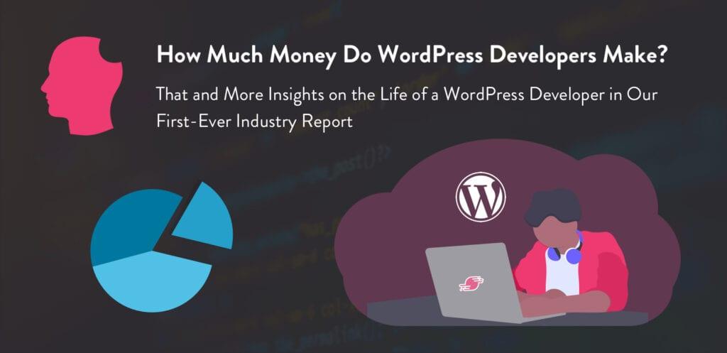 wordpress_developers_industry_report_blog_img