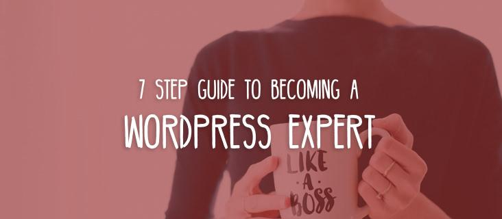 wordpress-expert-guide