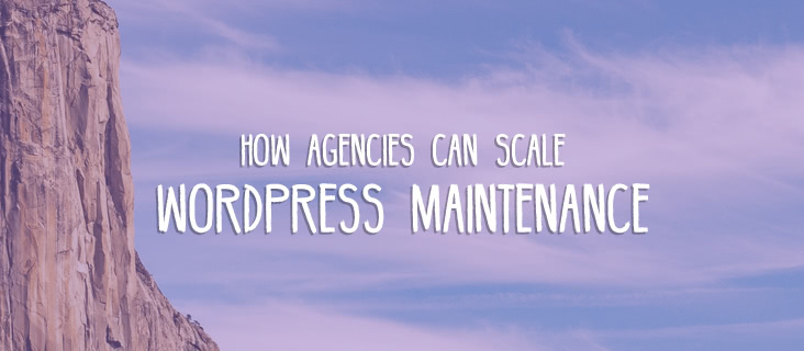 scale-wordpress-agency