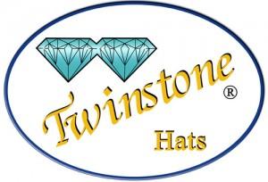 TWIN_logo