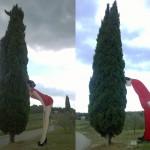 Het Chianti Sculpture Park