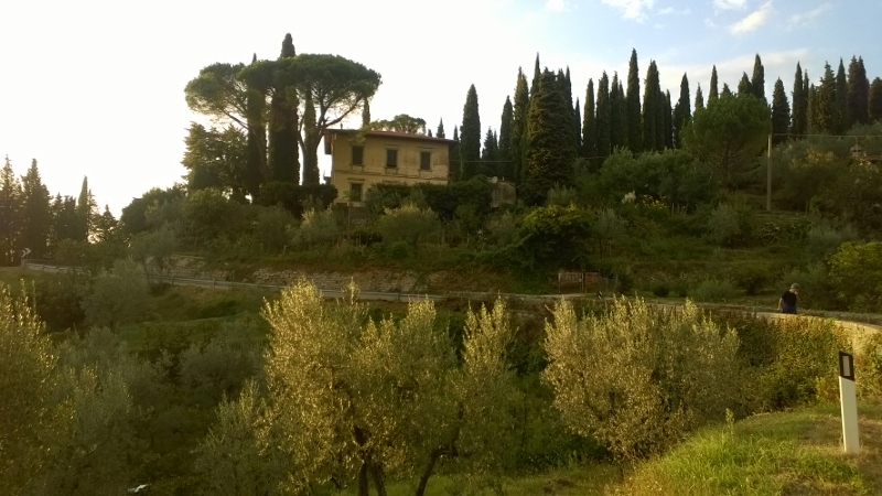 Fietsen tussen de olijfboomgaarden op de weg Sette Ponti