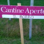 Het wijnfestival Cantine Aperte