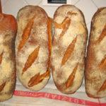 Toscaans brood: il pane Toscano