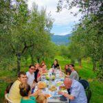 De wijnoogst in Toscane