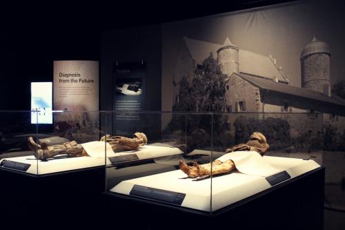 Mummies of the World 1