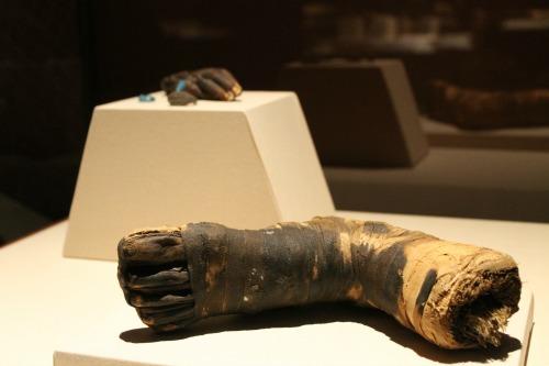Mummies of the World Foot