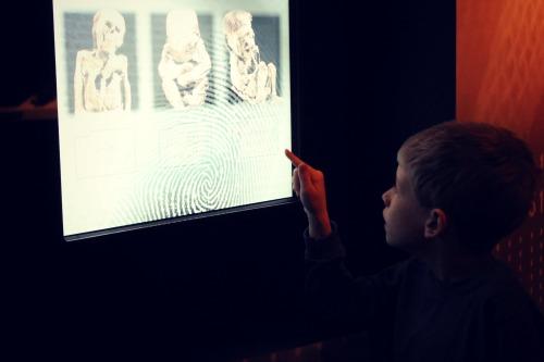 Mummies of the World Interactive