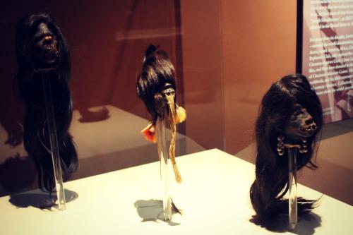 Mummies of the World Shrunken Heads