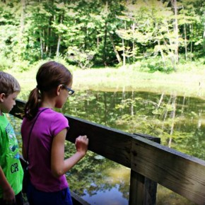 Great Parks of Hamilton County ~ Miami Whitewater Forest