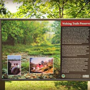 Wolsing Trails in Independence