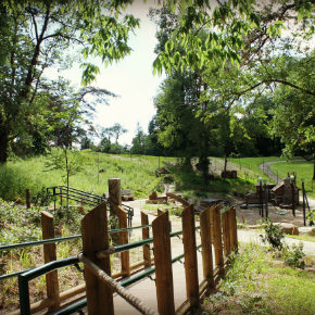 NaturePlay at BCM ~ A Playground Like No Other