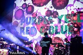 St Louis concert photos.