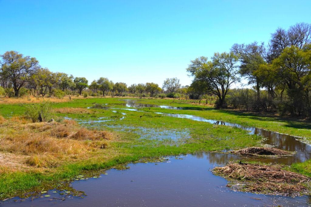 Botswana Khwai River
