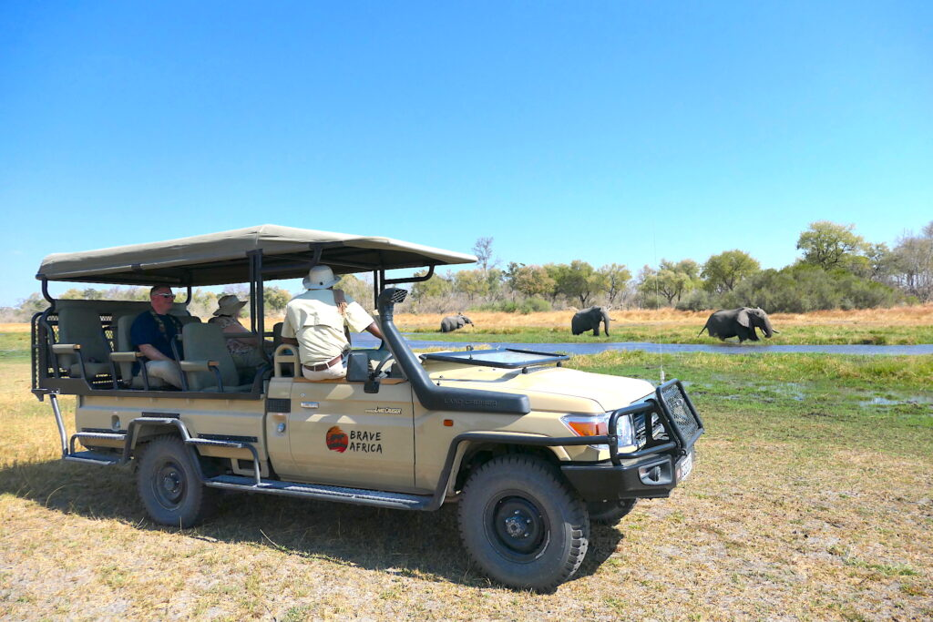 On Safari with Brave Africa