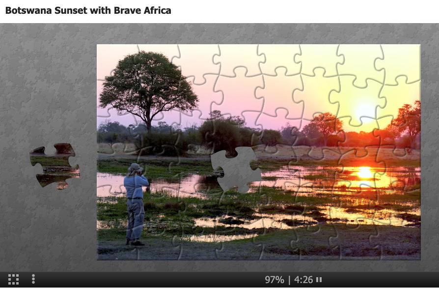 Brave Africa Safaris puzzle