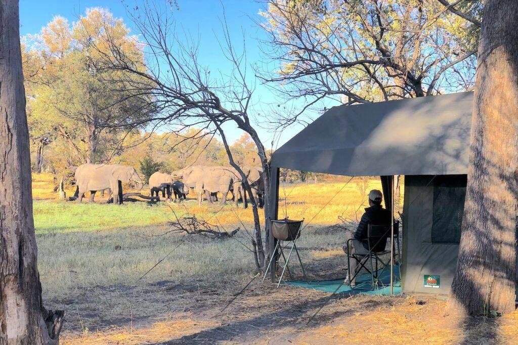 Botswana camp sights visit Khwai Concession