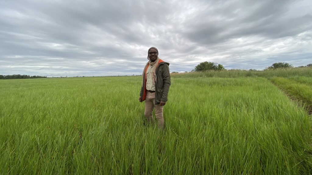Tabona Wina in an Open Field on Safari