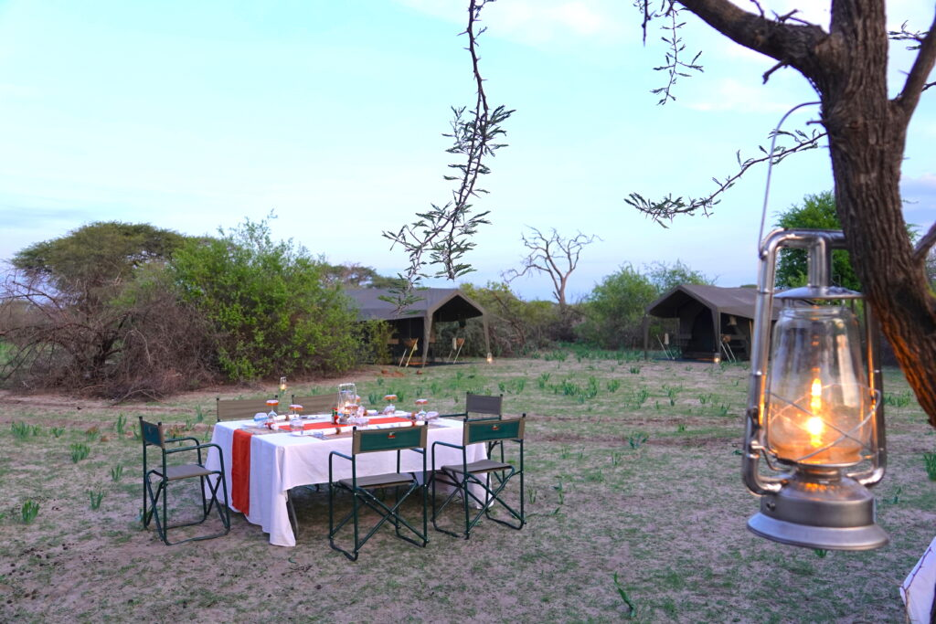 Dinner on an African Safari