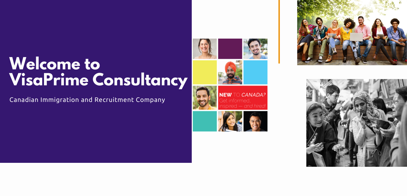 immigration and visa consultant