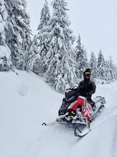 stock snowmobile wrap