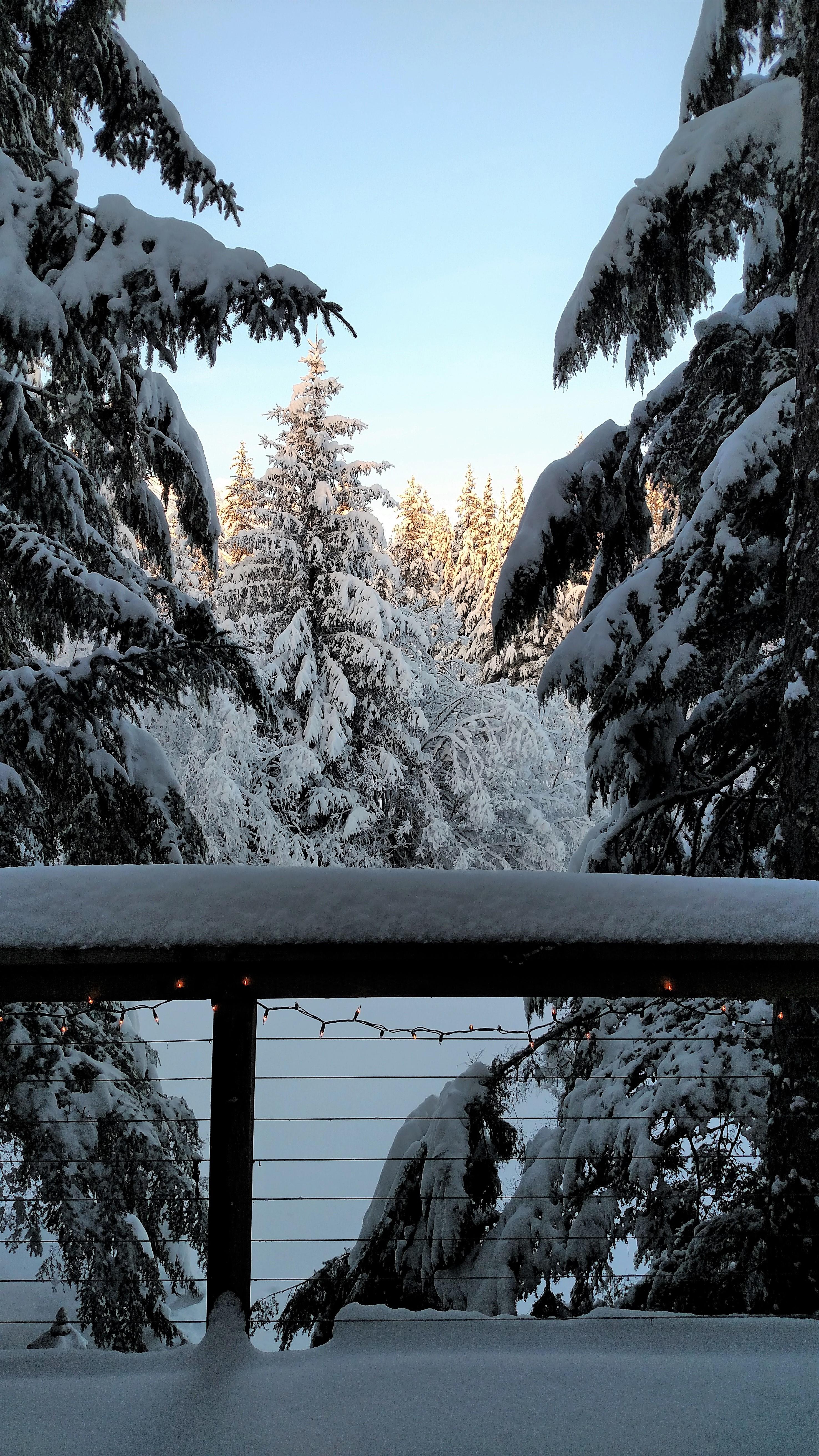 view-from-my-front-door