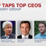 cnn Trump CEO
