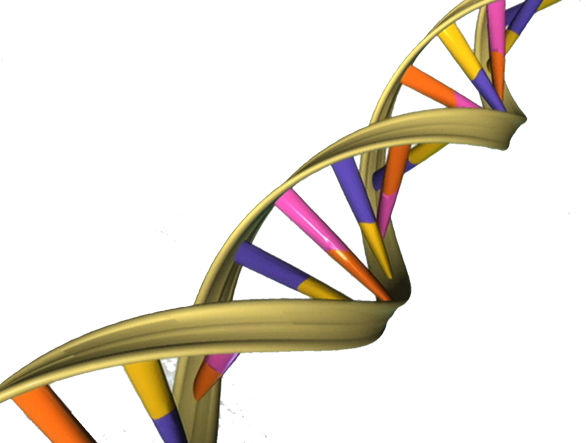 How Can A Genetic Test Affect Your Life Insurance