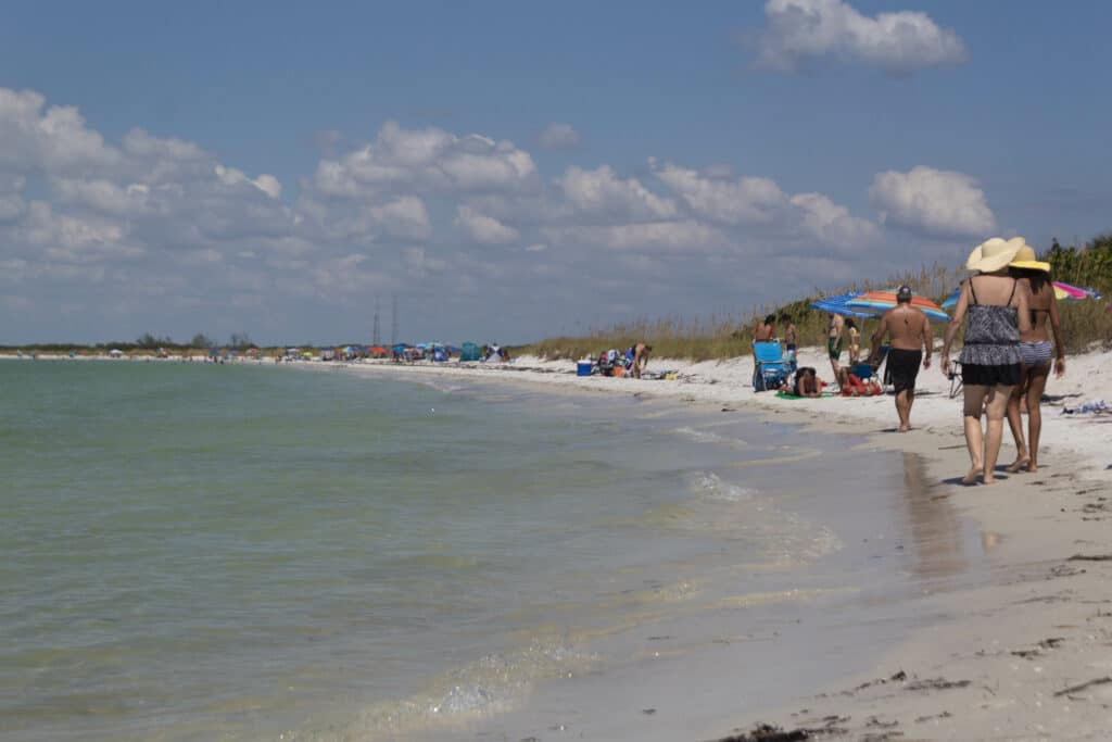 Tampa day trips