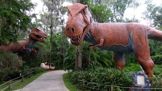 Dinosaur World walkway