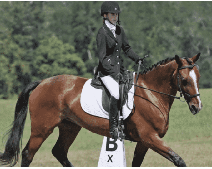 Millbrook Horse Trials, three day eventing