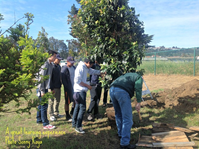 boys planting a tree and overseeing work SK MK