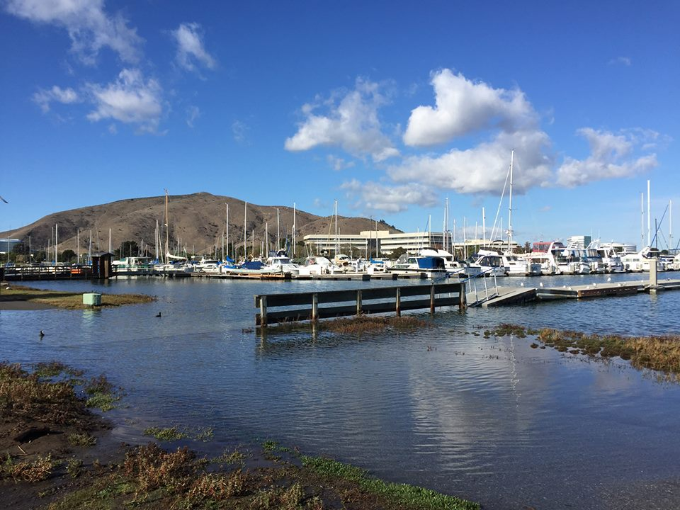 King Tide flooding at Oyster Point Marina—Wed., Nov. 25, 2015 Photo: S Brennan