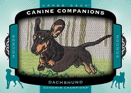 2017-Goodwin-Champions-Canine-Companions-CC81-Dachshund