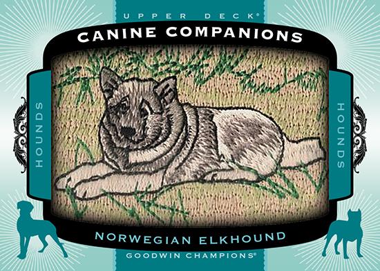 2017-Goodwin-Champions-Canine-Companions-CC85-Norwegian-Elkhound